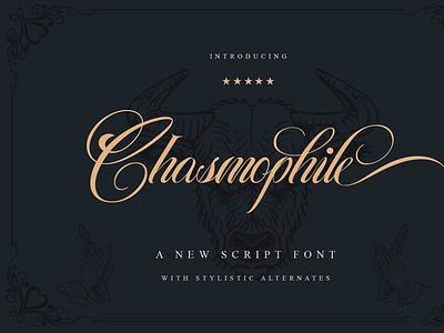 chasmophile script 01