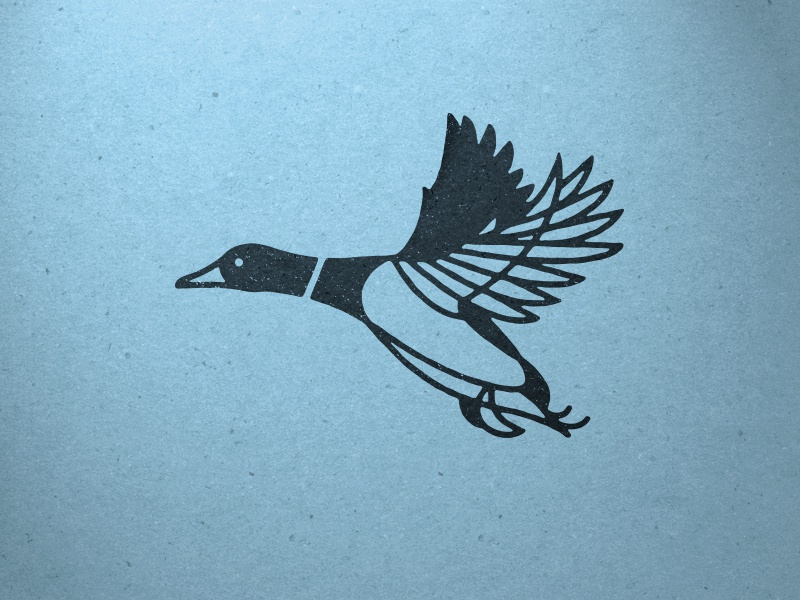 Mallard duck lines design illustration