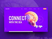 Site Concept / Aquarium