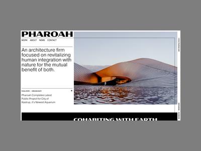 Web Concept - Architecture