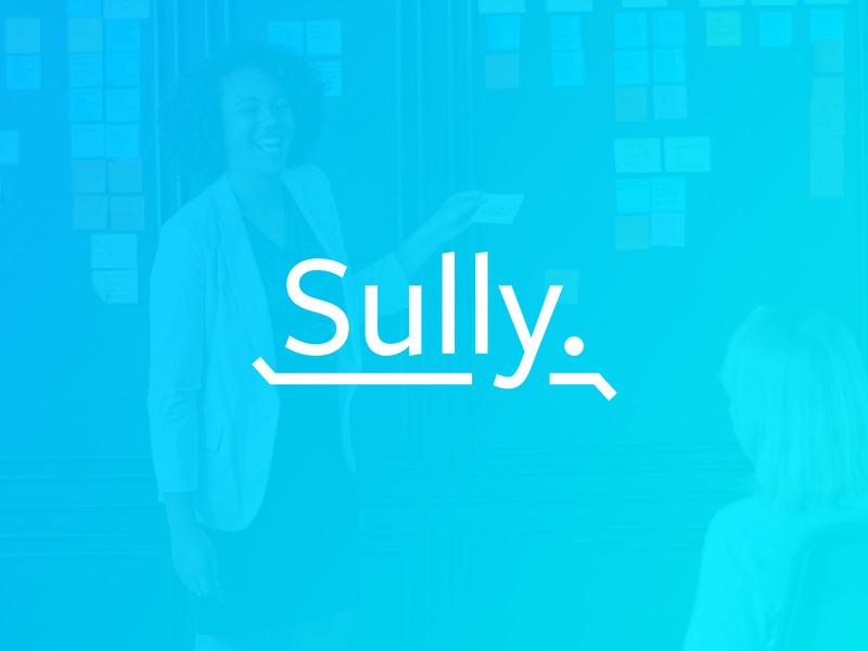 Sully - Your Money Saving Pal. fintech illustration mobile app tech company wip mark graphic branding identity brand typography logo design tech finance