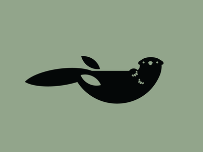 Морской бобр (Sea otter)