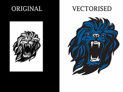 vector tracing illustrator design illustration vector