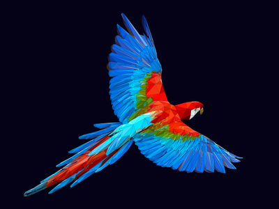 Poly Parrot animal polygon geometric colorful bird parrot poly