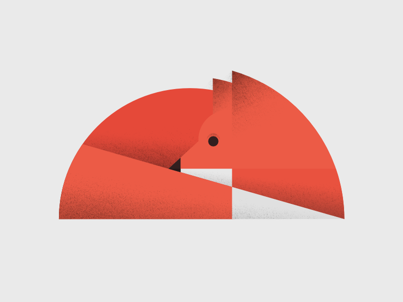 fox. affinity designer simple shapes texture illustration geometry minimal fox animal