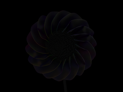 Black flower