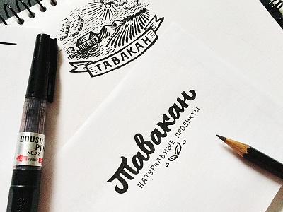 "Logotype ""Tavakan"" logotype logo cyrillic brushpen letter calligraphy lettering"