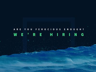 We're Hiring!  design web design designzillas ferocious typography hiring jobs florida orlando