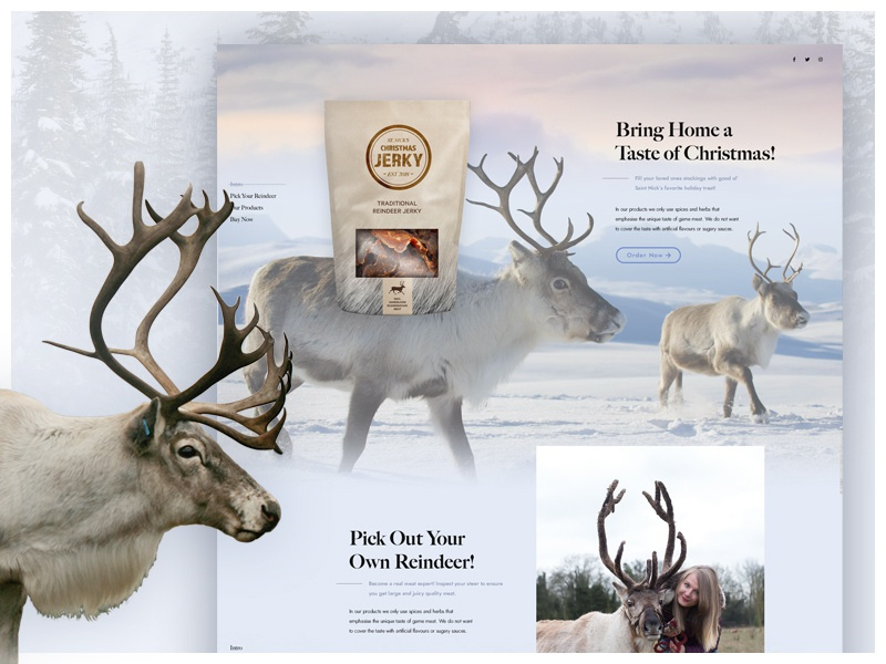 St. Nick's Christmas Jerky uidesign christmas jerky reindeer mock the halls designzillas web design