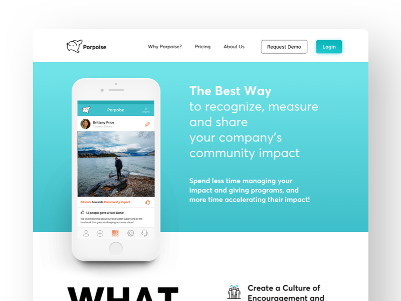 Early Porpoise website concept app flat design interface colours typography web ios ux ui