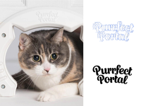 Purrfect portal
