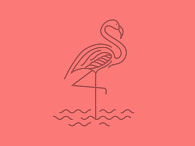 Flamingo flamingo animal clean simple bird pink