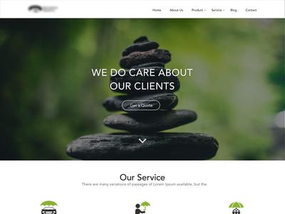 Insurance Agent Website design.