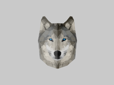 Wolf wolf gray polygon low poly logo animal