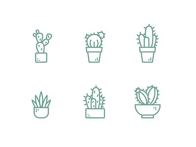 Cactus succulent green nature plants outline illustration outline icon illustration