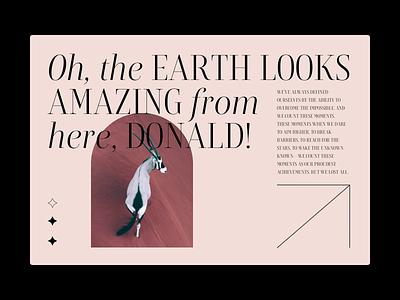 Full of life — Website design layout slider art art direction figma animals hero branding editorial tourist home modern minimal landing web website ux ui design