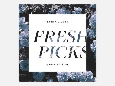 Fresh picks