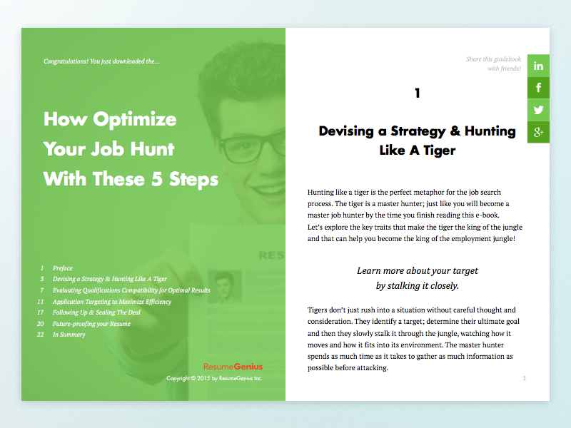 job hunt guidebook by ivy yeh on dribbble