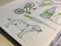 Lab Dog Sketch