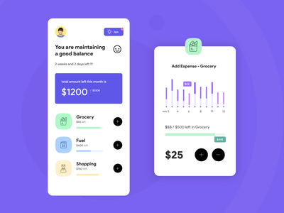 Expense Manager App UI rapidgems user experience designer data interpretation ux user experience iphone ios expense manager design app ui design ui