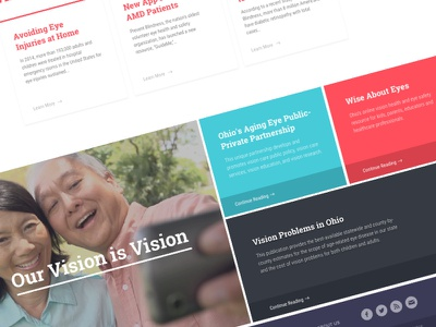 Prevent Blindness Homepage Concept vision homepage web agency marketing mockups launchpad lab