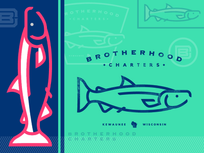 Brotherhood Charters_Concepting lines wisconsin concept logo brand illustration salmon coho