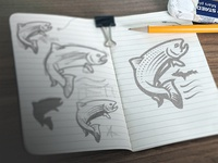 Trout Unlimited Sketches