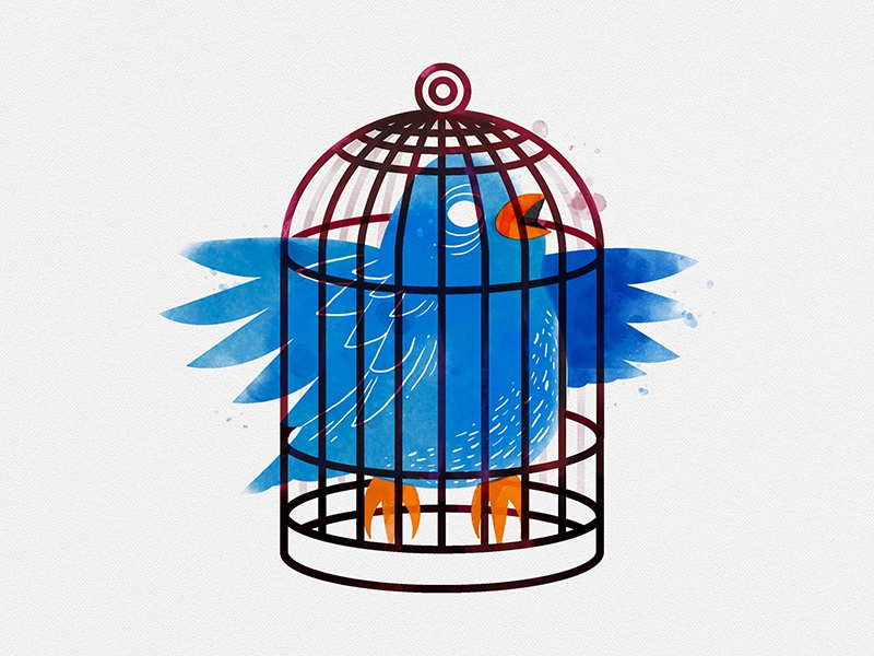 Just a Bird in a Small Cage bird cage watercolor