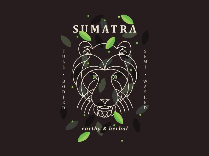 Sumatra  starbucks tiger coffee sumatra