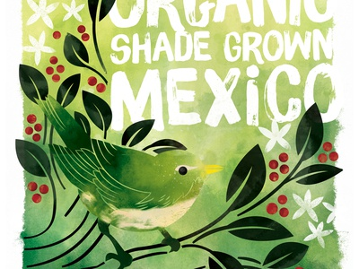 Shade Grown Mexico