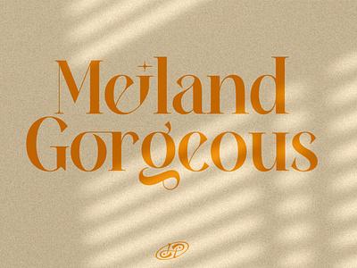 Meiland Gorgeous font typeface decorative display font serif font font design illustration serif typeface elegant font serif