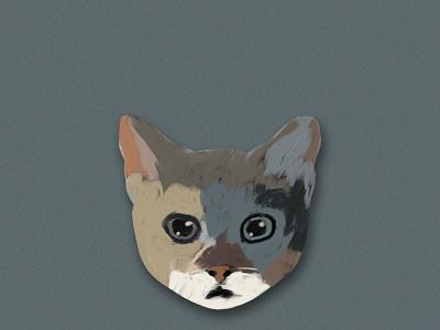 cat sketch cat art animal drawing cat illustrations flat minimal artwork creative vector photoshop illustrator illustration design animation