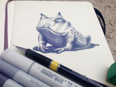 Horned Frog sketch markers paper illustration sketches horned frog
