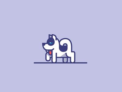 Puppy siberian husky dog puppy