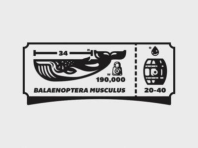 Whale Facts oil barrel ticket illustration mark whale receipt