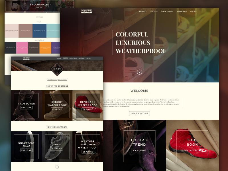 Leather Website ui fashion leather color web