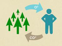 Greestmas Icon (O2, CO2)