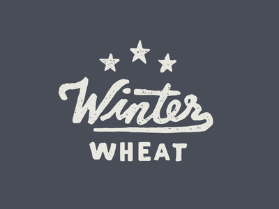 Winter Wheat // Main & Mill Brewing Co. main  mill brewing co. brewpub handdrawn script rugged typography print identity brewery lettering