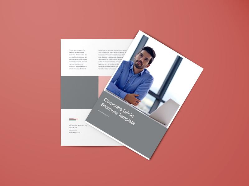 BiFold Brochure Template download brochure template free
