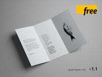 7 Free Trifold Brochure Mockups