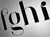 Grace Serif Typeface