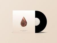 Free Vinyl Record Mockup PSD