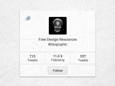 Twitter Widget (Psd) twitter widget follow blugraphic psd