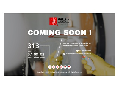 wallys comng soon page branding illustration web design graphicdesign design