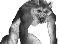 Wolfman Sketch - Front View