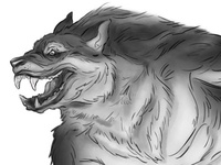Wolfman Sketch - Side View
