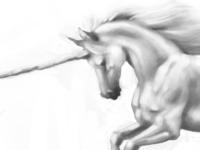 Unicorn Painting, 2 Hours
