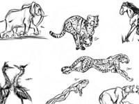 Vertebrate Gesture Sketches round 3
