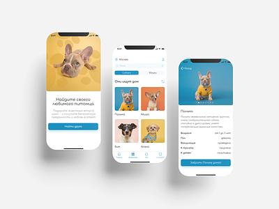 Pet shelter app concept dog uiux ui webdesign figma pets pet shelter app design application app
