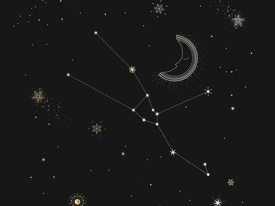 Taurus Constellation magic vintage constellation taurus stars